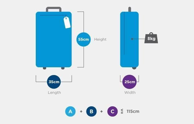 Baggage Allowance Air India Ltd Switzerland