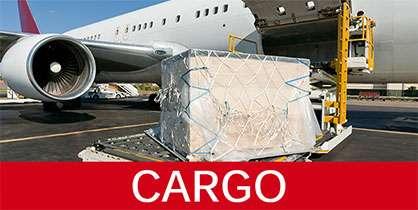 Cargo Operations - Air India